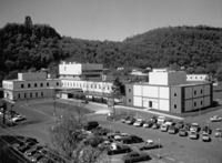 1977 MOB