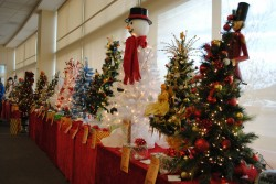 Winona Health Auxiliary Fantasy of Trees
