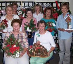 Winona Health Auxiliary Fantasy of Trees committee